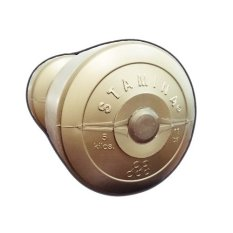 Stamina dumbbell Plastic 5 kg Gold