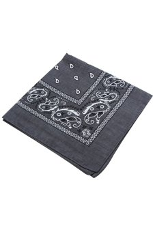 Harga Sanwood Paisley Bandanas Double Sided Scarf (Grey)