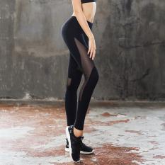 Kebugaran Jala Cepat Kering Peregangan Legging Kebugaran Celana Celana Yoga (Hitam (tidak ada langkah