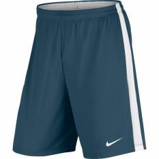 Nike Dry Academy Men's Shorts - Hijau