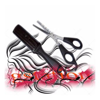 1SHOP 2in1 Gunting Rambut comb scissors