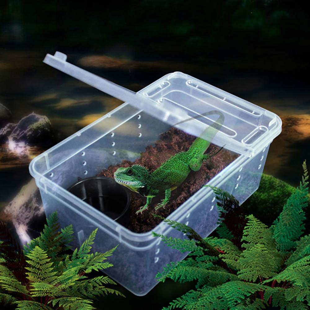 Bluelans(R) Transparent Plastic Amphibian Insect Reptile Breeding Box Transport Feeding Case - intl