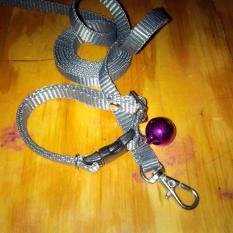 Collar/Kalung uk S + Leash Abu-abu Tua untuk Kucing, Kelinci, Musang, Puppy Small breed