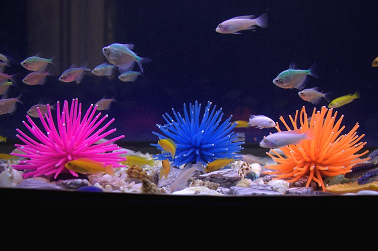 Eachgo Random Color Aquarium Fish Tank Sea Artificial Fake CoralOrnament Silicone Decoration - intl
