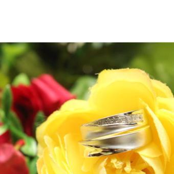 Emas putih 12k AuAg cincin