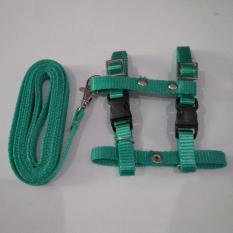Harness H uk S + Leash Hijau Tosca untuk Kucing, Kelinci, Musang, Puppy Small breed