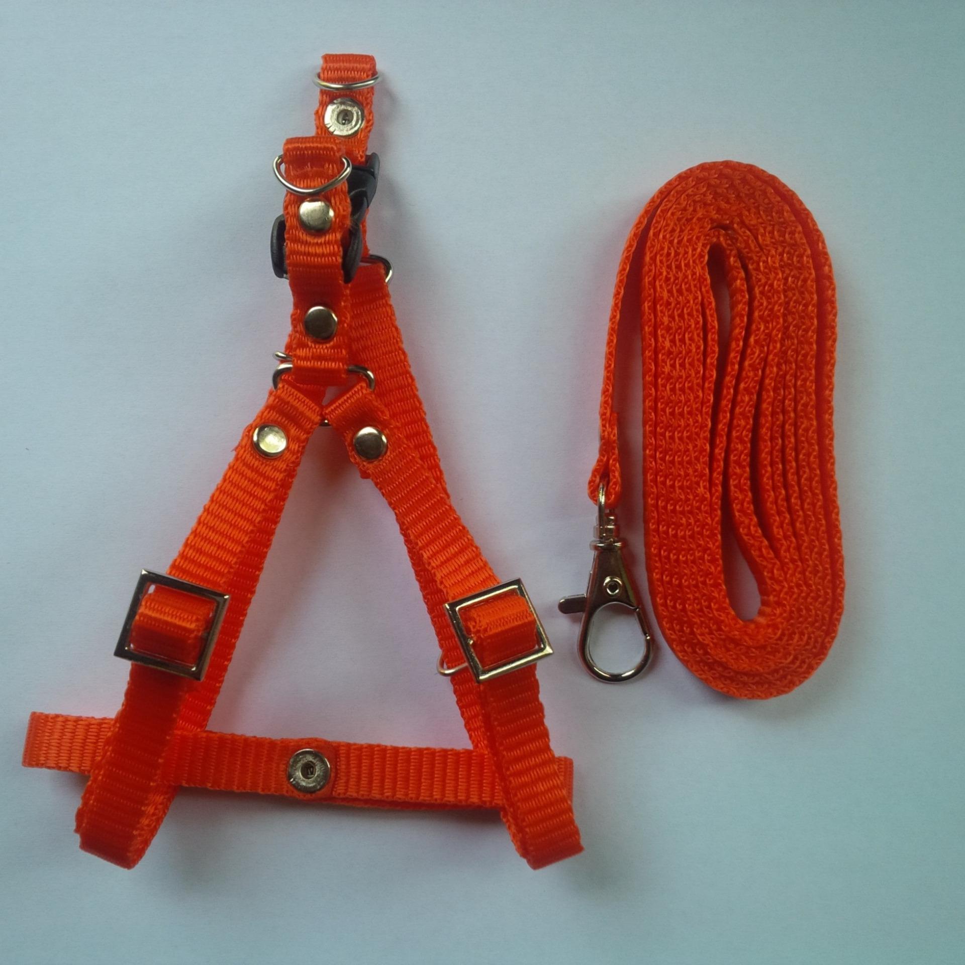 Harness Y uk S + Leash Orange untuk Kucing, Kelinci, Musang .