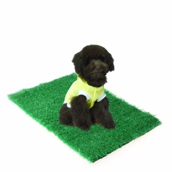 Pet Cat Puppy Dog Training Indoor Potty Synthetic Grass Pee PadsFor Restroom - intl