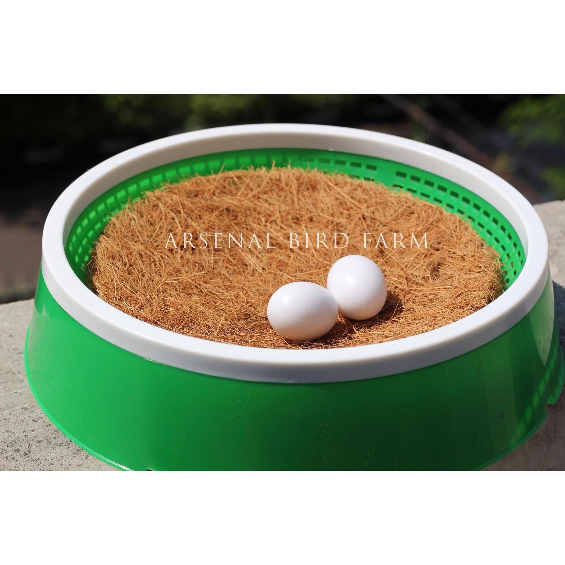 Telor Palsu Merpati / Dummy Egg / Plastic Egg / Telor Plastik